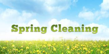 spring house cleaning ecomaids green spring cleaning ideas for your home