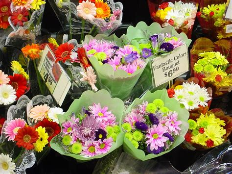 cut flower food additives for cut flowers