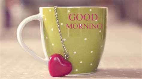 images of love morning 6 best cute good morning love image messages for lovers