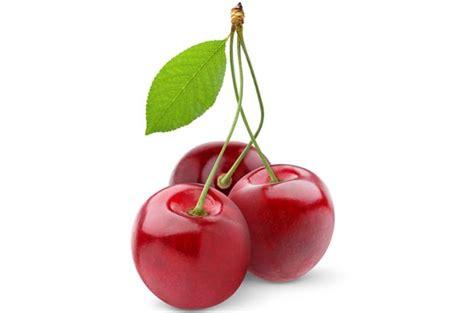 cereza guinda cherry la cerise 171 cuisine de b 233 b 233