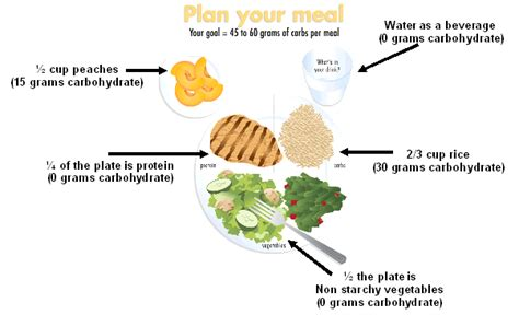 carbohydrates use in human overview of carbohydrate metabolism visportsnutrition ca