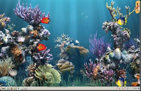 wallpaper bergerak dan hidup free download wallpapers aquarium bergerak animasi d