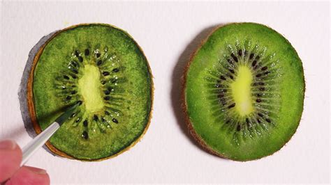 fruit drawings realism challenge 2 how to draw a kiwi fruit