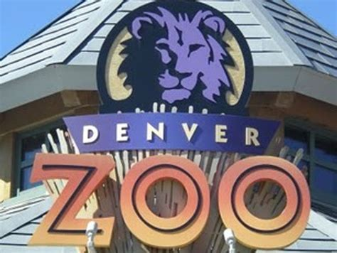 printable restaurant coupons denver denver zoo coupon