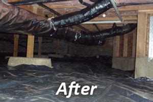 crawl space cleaning san francisco crawl space insulation replacement removal service in