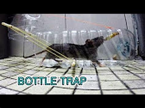 membuat perangkap tikus youtube cara membuat perangkap tikus dengan jitu dan mudah youtube