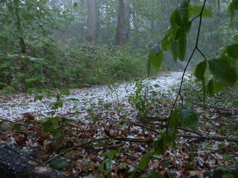 hängematte gross h 225 previs 227 o de granizo em mato grosso e goi 225 s canal rural