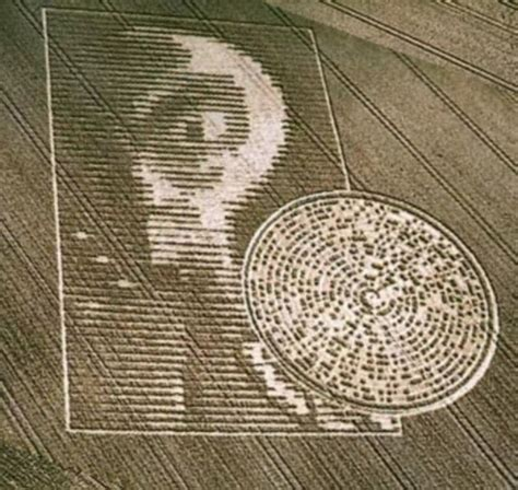 cropping pattern meaning in hindi crop circle aliens theory folklore findings explained