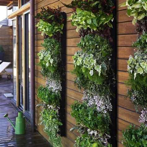 vertical wall garden kits sedl cansko