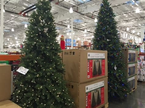 2015 costco christmas tree what you can find at costco october 2015