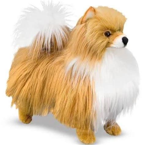 best shoo for pomeranians 24 best awesome stuffed animals images on stuffed animals stuffed