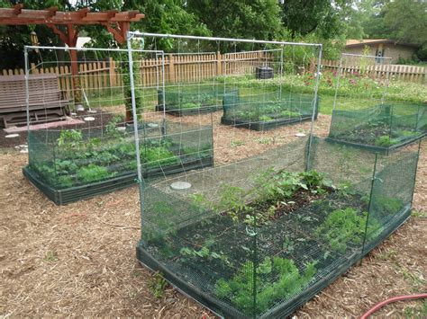 One More Month In The Garden Wellspring Food Pantry Netting For Vegetable Gardens