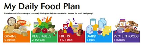 My Daily Food Plan Worksheet by Dietetic Intern Adrienne S Snap Challenge Introduction