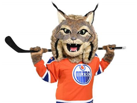 edmonton is 3rd place out of 65 000 cities on airbnb s top the edmonton oilers have a new mascot and it is mildly