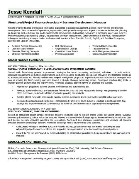 Example Global Finance Resume   Free Sample