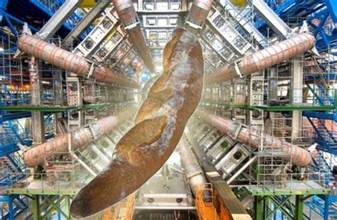 Large Hadron Collider Research Paper by Hadron Collider Essay