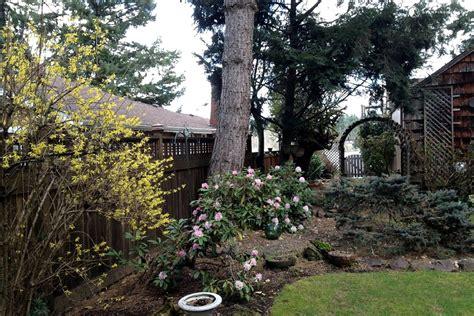 tree house rental near seattle washington