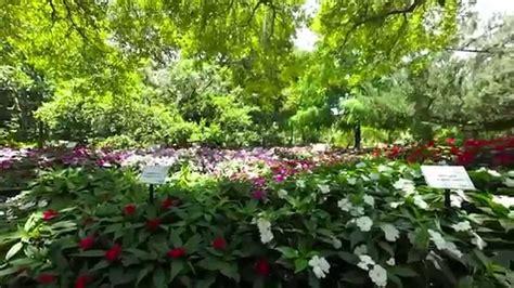 Leu Gardens by Harry P Leu Gardens