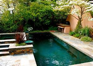 Best Backyard Pools For Kids 25 Best Backyard Lap Pools Trending Ideas On Pinterest