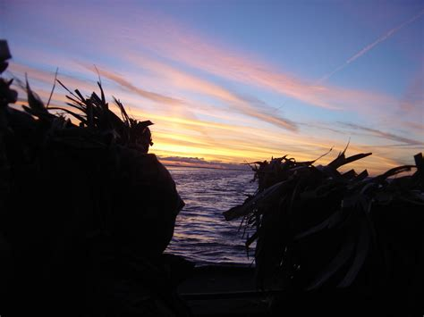 layout duck hunting lake st clair good morning from the goose blind hunt ducks hook fish