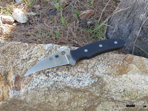 spyderco 3 inch blade spyderco fixed blade knife g 10 3 5 inch blade