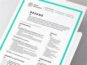 resume by iryna nezhynska dribbble