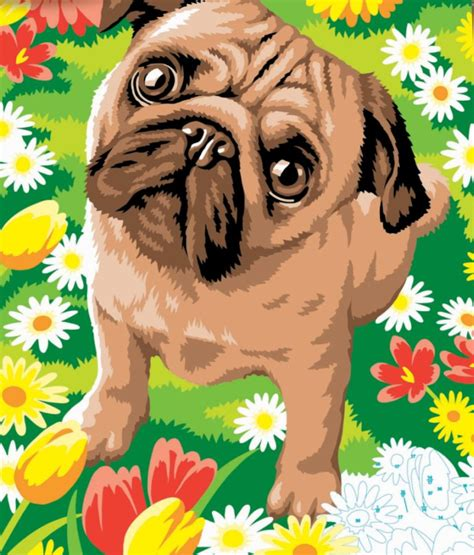 pug paint junior painting by numbers pug with flowers paint set from hobbies