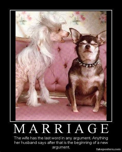 Funny Marriage Memes - friday funny marital bliss doggies com dog blog