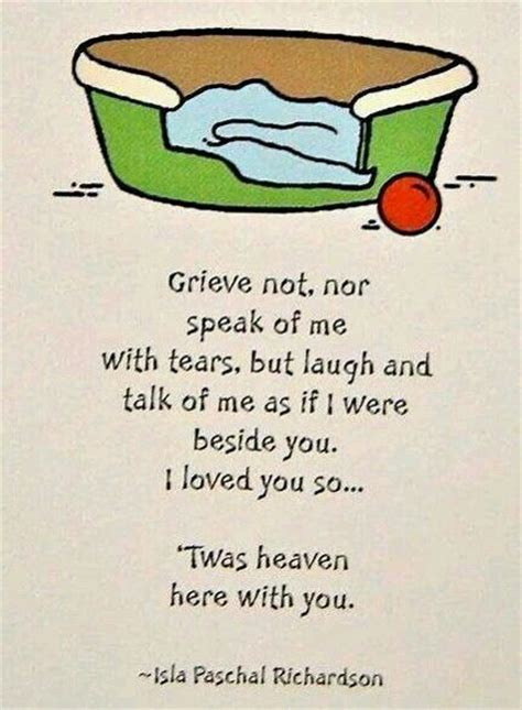 comforting words for loss of a pet 1000 pet loss quotes on pinterest pet loss pets and