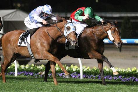 horse outside wins again for racing club norahmac racing matt laurie racing gallery