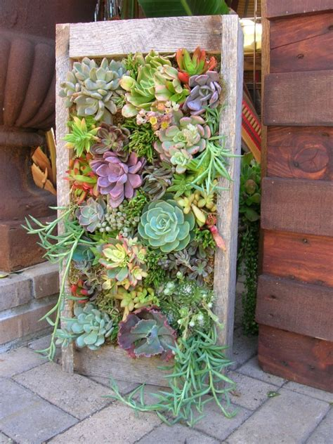 Best Succulents For Vertical Garden 35 Succulent Gardening Ideas For Small Creative Container