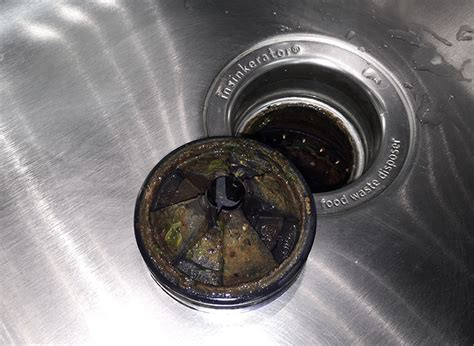 how to clean disposal how to clean garbage disposal ultimate step by step guide