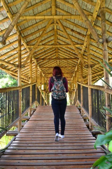 entrada jardin botanico bogota jard 237 n bot 225 nico jos 233 celestino mutis lugares tur 237 sticos