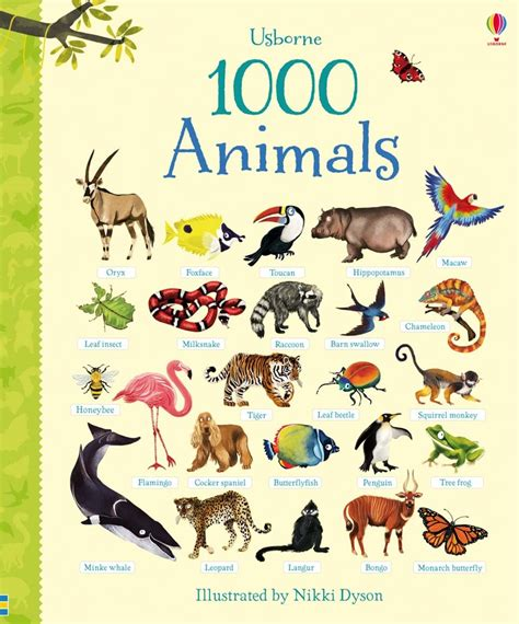 animal picture books 1000 animals at usborne children s books