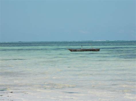 turisti per caso zanzibar kiwengwa viaggi vacanze e turismo turisti per caso