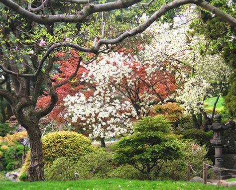 japanese flower gardens japanese flower garden flickr photo