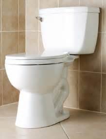 bathroom flusher flush toilet bathware