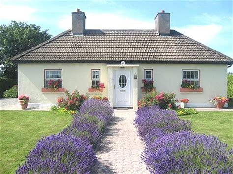 Mountain Home Interiors Yellow Shell Irish Holiday Cottage
