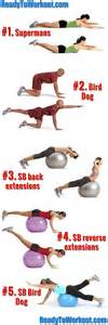 lower back exercises home lower back workout back