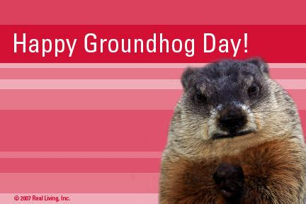 groundhog day vs happy day happy groundhog day pictures photos and images for
