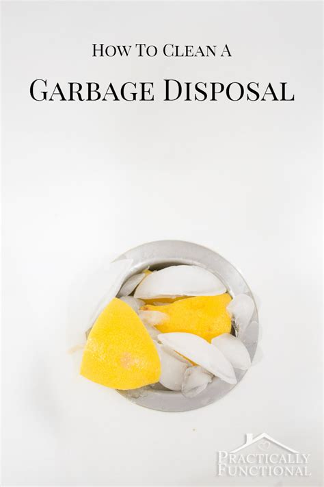 how to clean disposal how to clean deodorize a garbage disposal