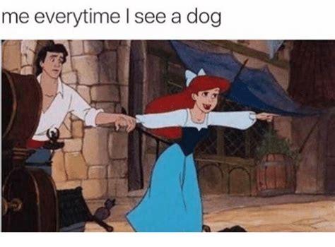 Me Me Meme - me everytime i see a dog dogs meme on me me