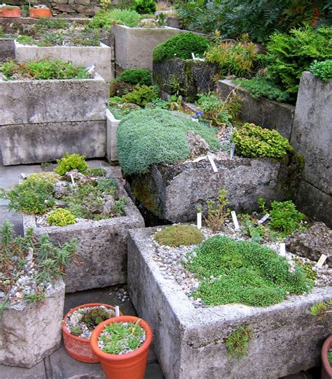 trough garden containers 22 best images about hypertufa on gardens