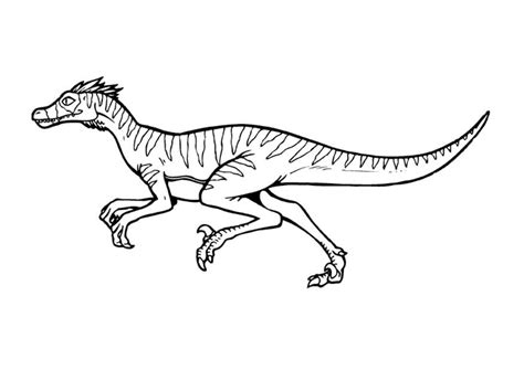 Coloring Page Velociraptor by Velociraptor Color Pages Dinosaurs Free