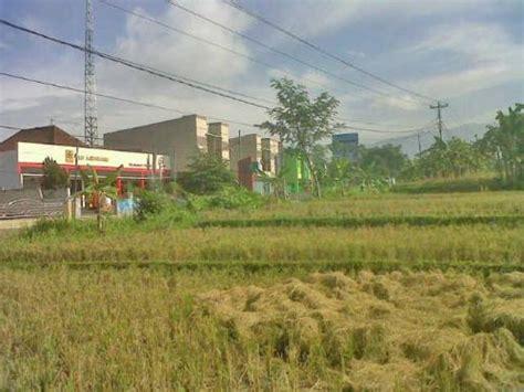 Tanah Kering Murah Sidoarjo jual tanah di ajibarang kulon murah tanah disewakan