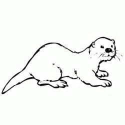 otter coloring pages coloring pictures categories animals otter