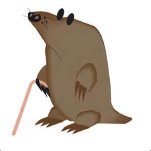 Are Moles Blind Bumper Sticker With Blind Cartoons Mole Cartoon Animal