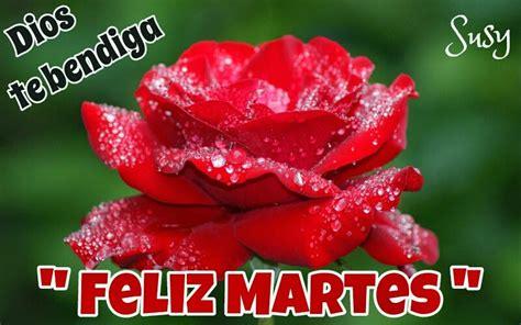imagenes de flores de feliz martes bendecido martes con flores coloridas im 225 genes de