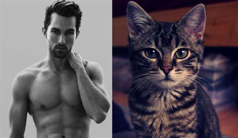 Hot guys vs kittens crying