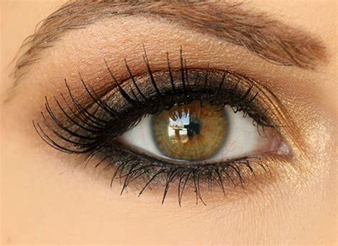Eyeshadow Brown step by step smokey brown eyeshadow tutorial